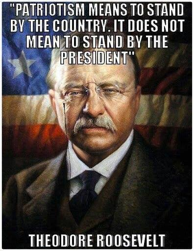 Patriotism means to stand by the country...